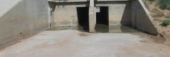 Silting basin rehabilitation